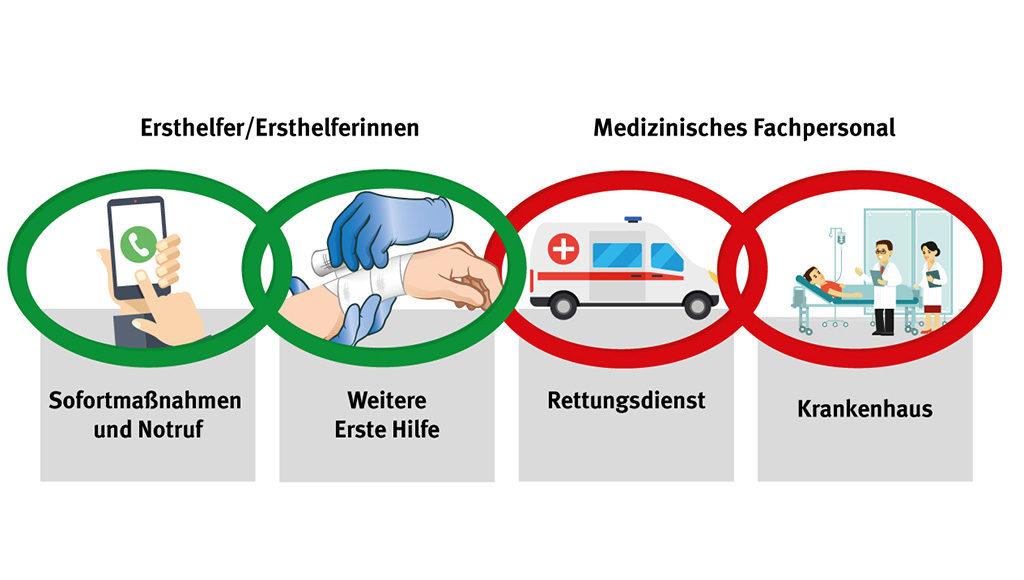 Die Rettungskette: 1. Sofirtmaßanhmen und Notruf 2. Weitere Erste Hilfe 3. Rettungsdienst 4. Krankenhaus