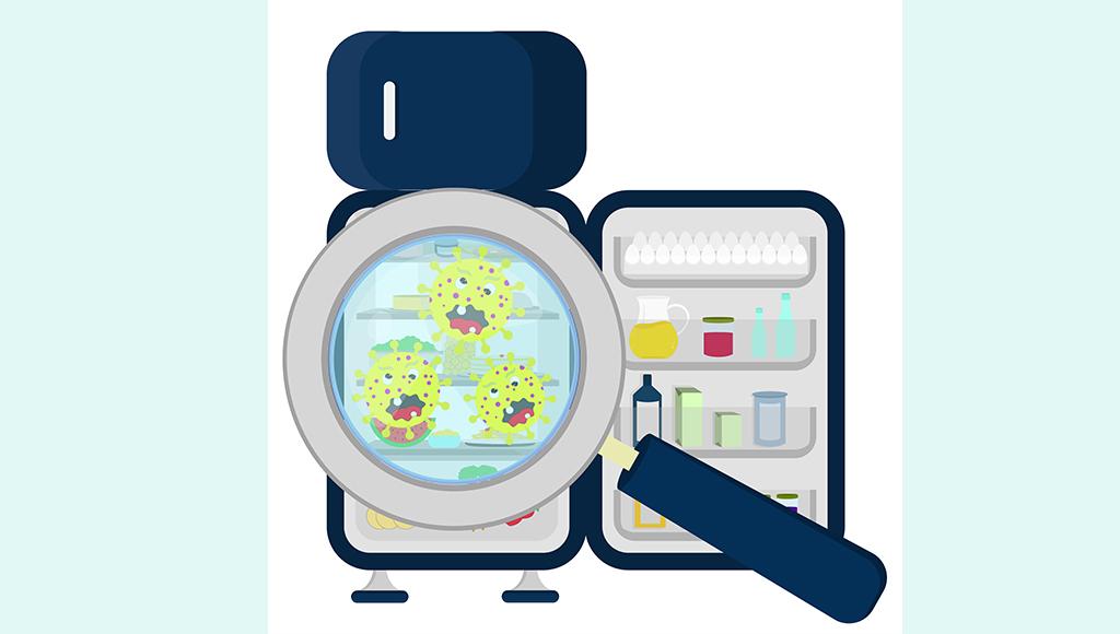 Das Bild zeigt einen Kühlschrank mit davor gehaltener Lupe und Bakterien. Zeichnung.