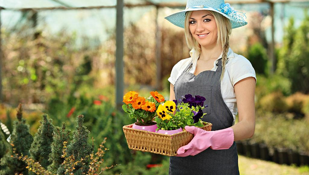 Eine Floristin trägt Gummihandschuhe und einen Korb mit Stiefmütterchen.